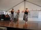 malia__s_party_and_asian_festival_037