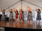 malia__s_party_and_asian_festival_148
